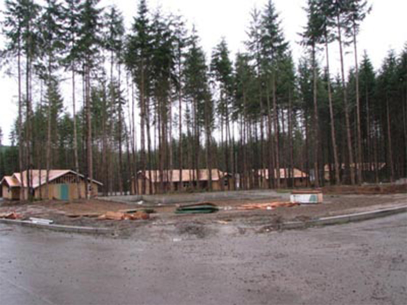 Tulalip Housing and Construction Mission Highlands view of homes from street through trees